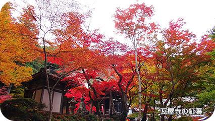 瓦屋寺の紅葉